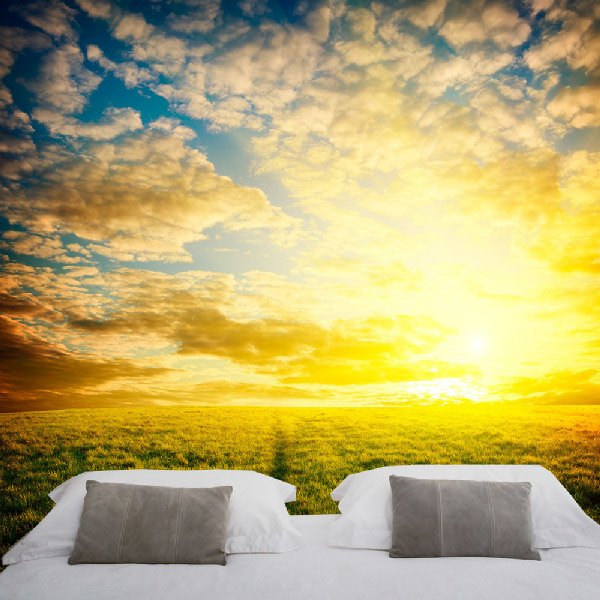 Wall Murals: Summer sunset