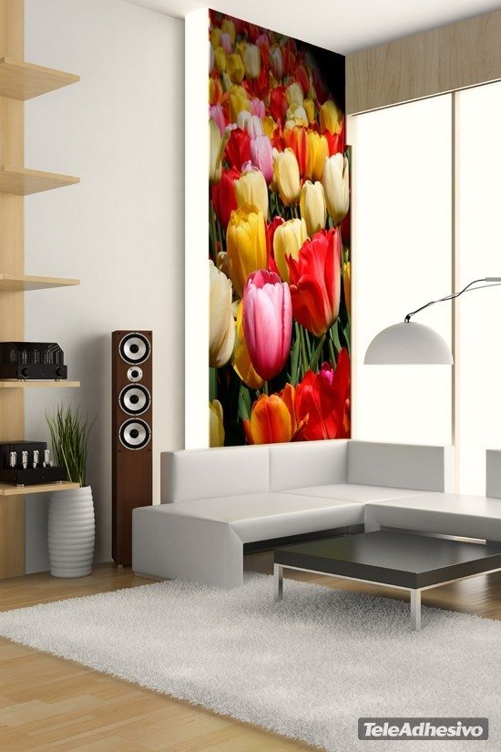 Wall Murals: Tulips