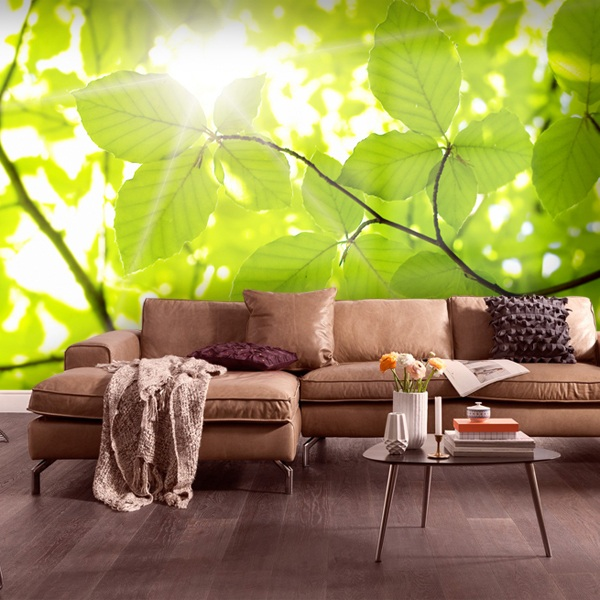 Wall Murals: Leaves