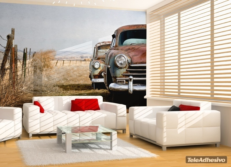 Wall Murals: Old abandoned cars