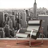 Wall Murals: Aerial view of New York 2