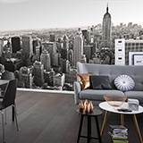 Wall Murals: Aerial view of New York 3