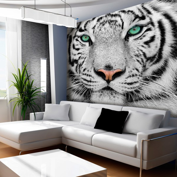 Wall Murals: White Tiger