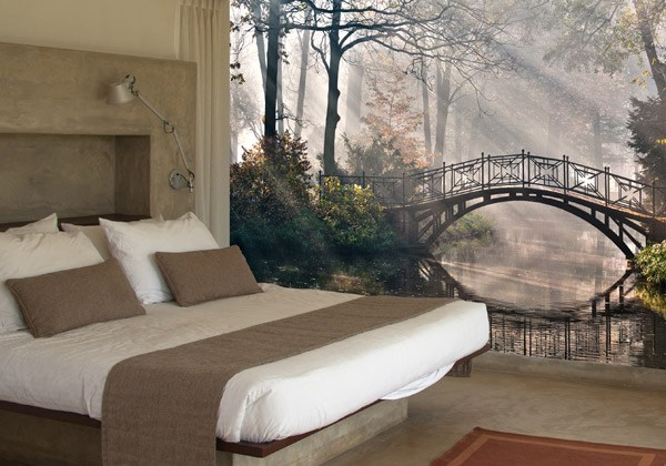 Wall Murals: Bridge in the forest