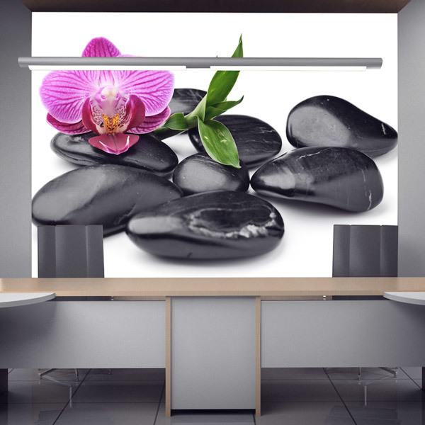 Wall Murals: Orchid with stones 0