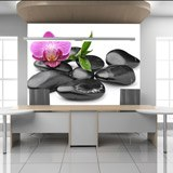 Wall Murals: Orchid with stones 2