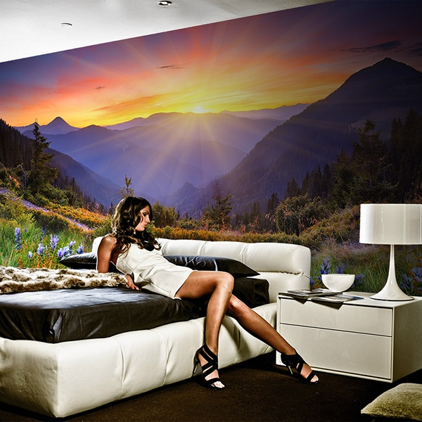 Wall Murals: Sunset Country