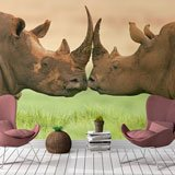Wall Murals: Rhinoceros