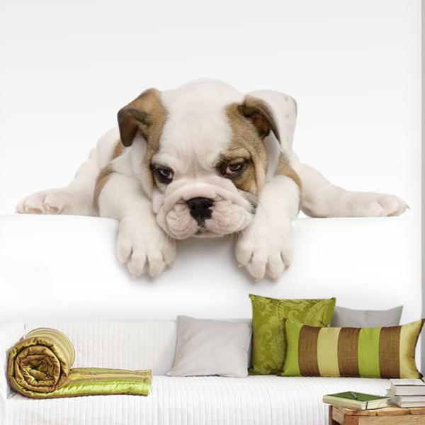 Wall Murals: Bulldog