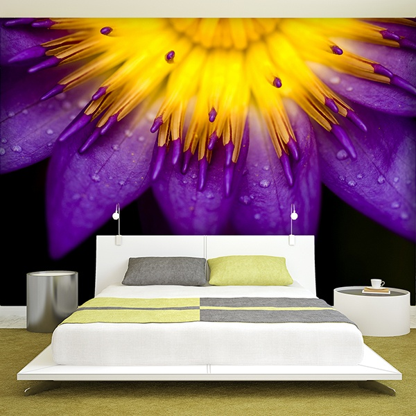 Wall Murals: Purple Lotus Flower