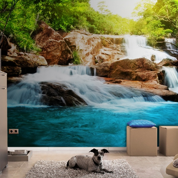Wall Murals: Rapid River
