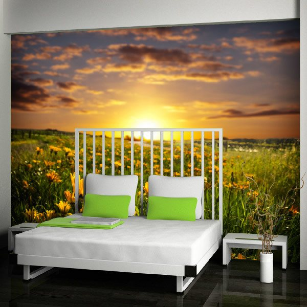 Wall Murals: Field of daisies
