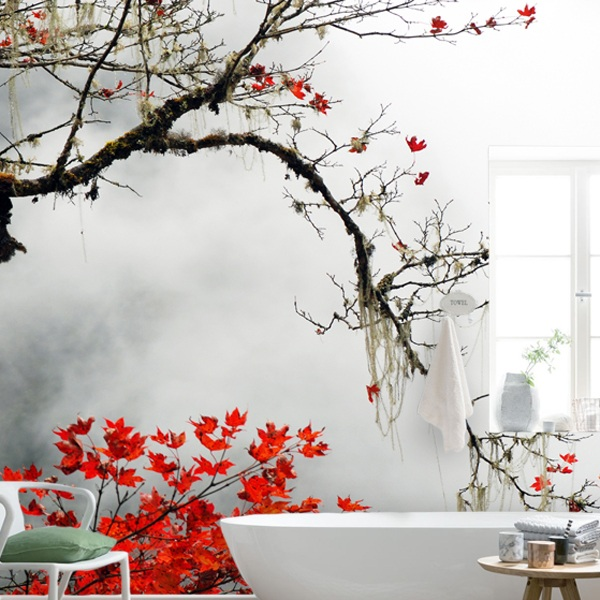 Wall Mural Japanese Maple Muraldecal Com