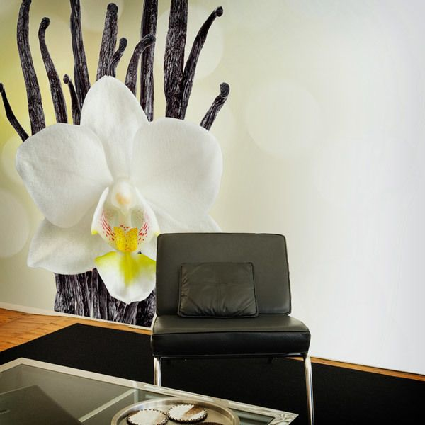 Wall Murals: white Orchid