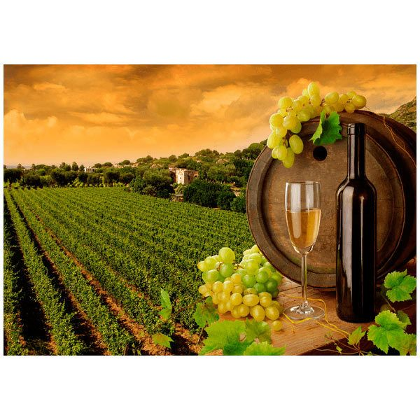 Wall Murals: Vineyards and bottles
