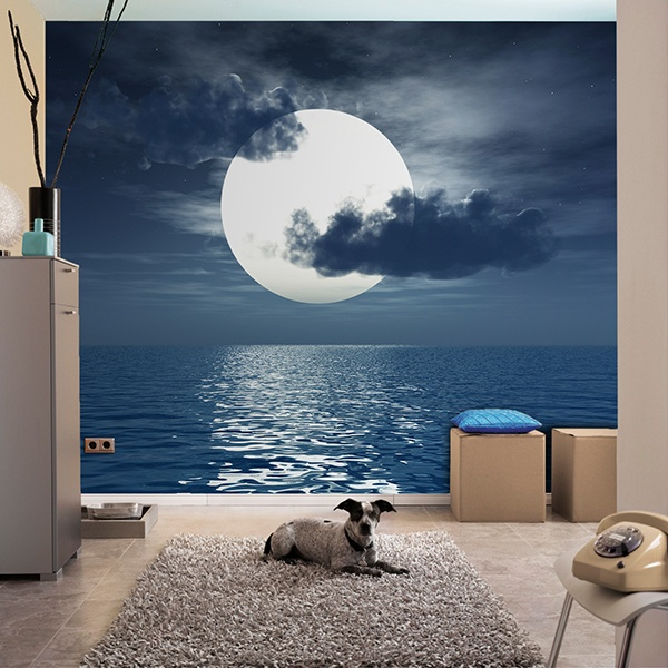 Wall Murals: Moon over the sea