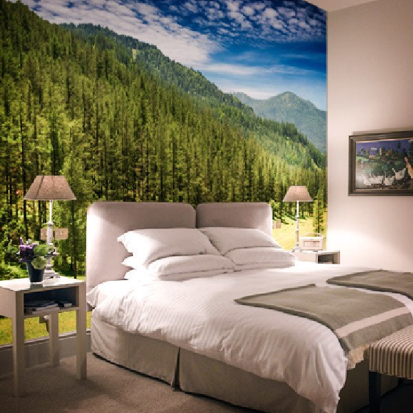 Wall Murals: Pine forest