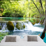 Wall Murals: Vegetation and river with waterfall 4