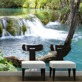 Wall Murals: Vegetation and river with waterfall 5