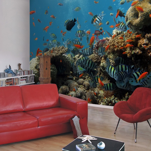 Wall Murals: Reef fish