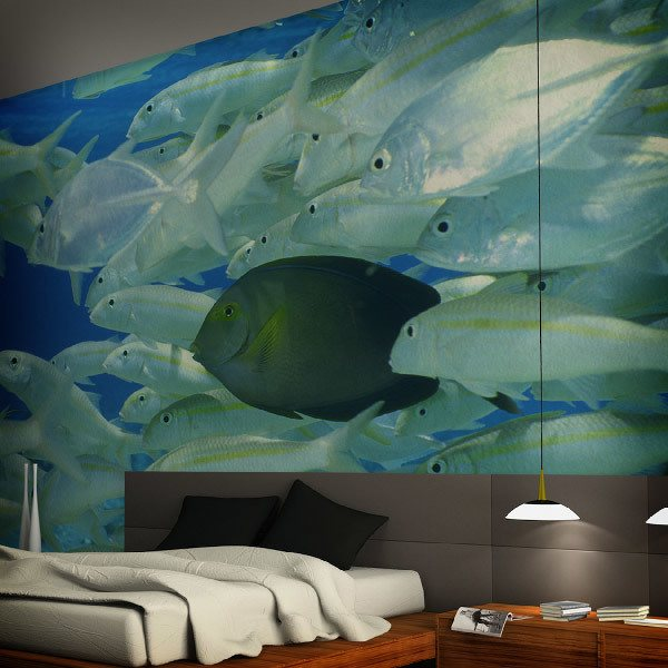 Wall Murals: Bank of silvery fish