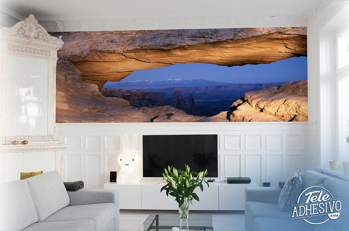 Wall Murals: Crack in the rocks