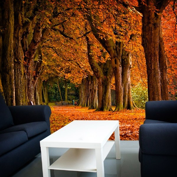 Wall Murals: Park in autumn