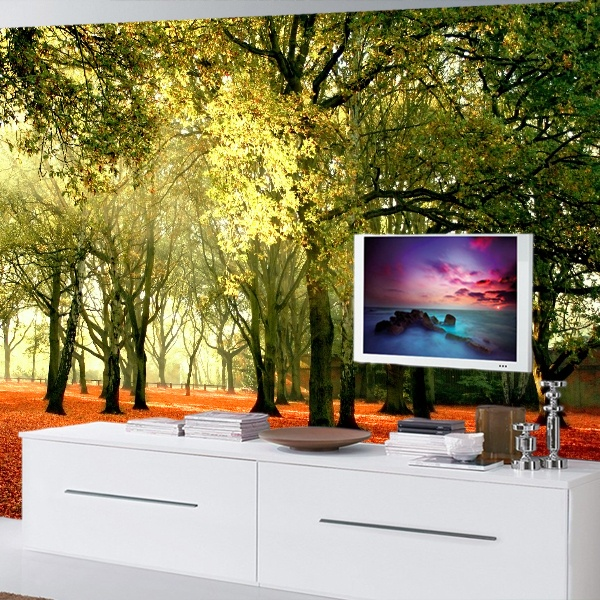 Wall Murals: Autumnal forest