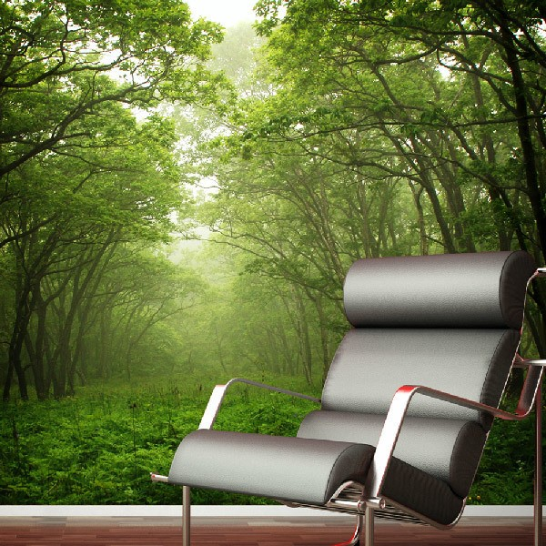 Wall Murals: Green Forest