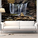 Wall Murals: Small mountain waterfall 3