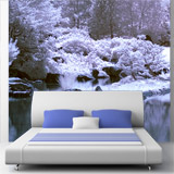 Wall Murals: Forest in winter 4