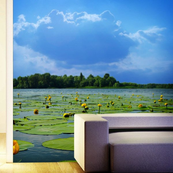 Wall Murals: Lake water lilies