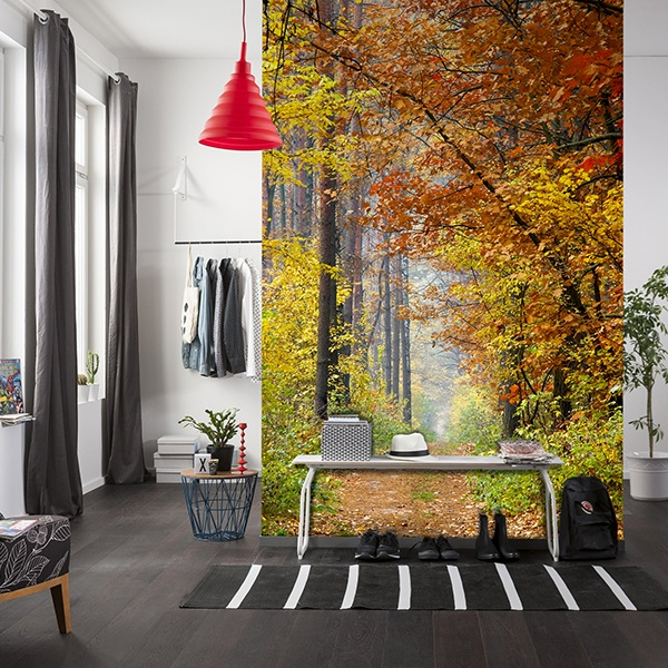 Wall Murals: Path in autumn
