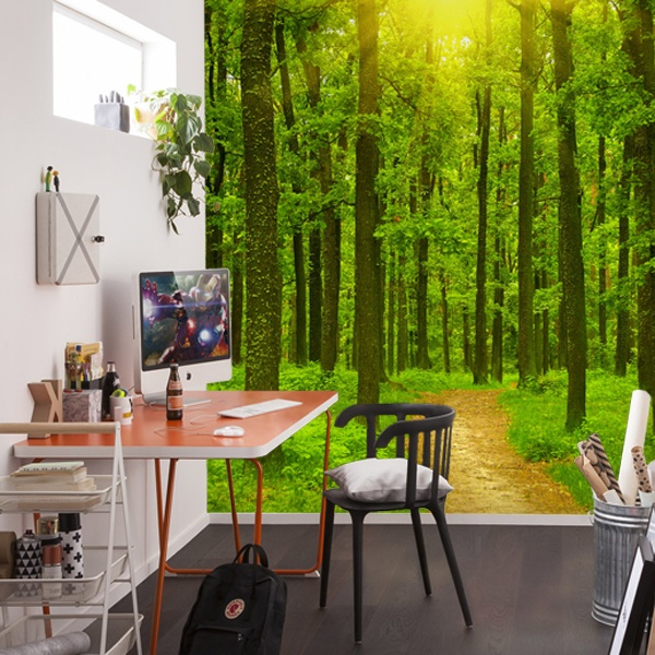 Wall Murals: Sunset in the forest