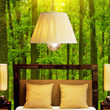 Wall Murals: Sunset in the forest 5