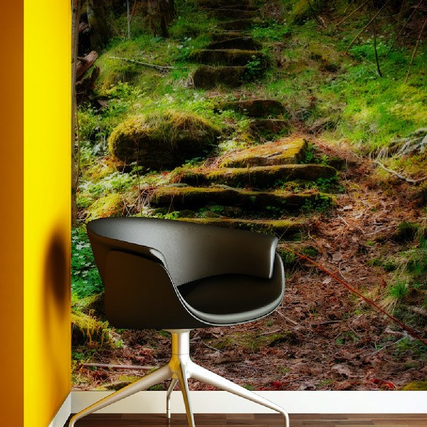 Wall Murals: The stairs of the forest