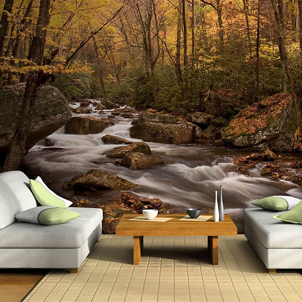Wall Murals: Autumn forest river
