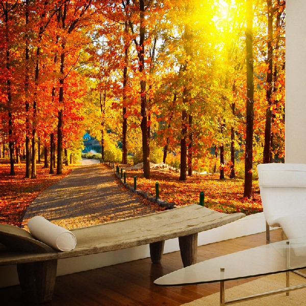 Wall Murals: I walk through the autumnal park