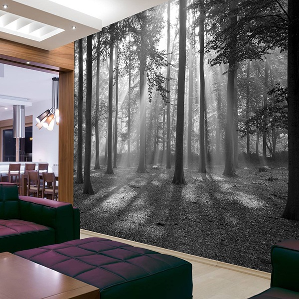 Wall Murals: Forest in black and white