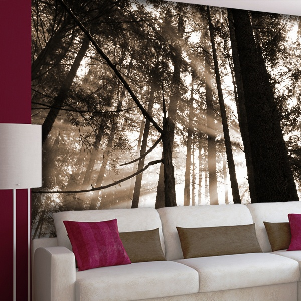 Wall Murals: Under the pine forest