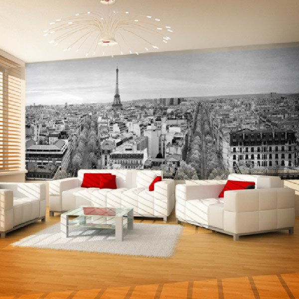 Wall Murals: Panoramic of Paris in black and white