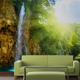 Wall Murals: Waterfall in the forest 4