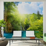 Wall Murals: Waterfall in the forest 5