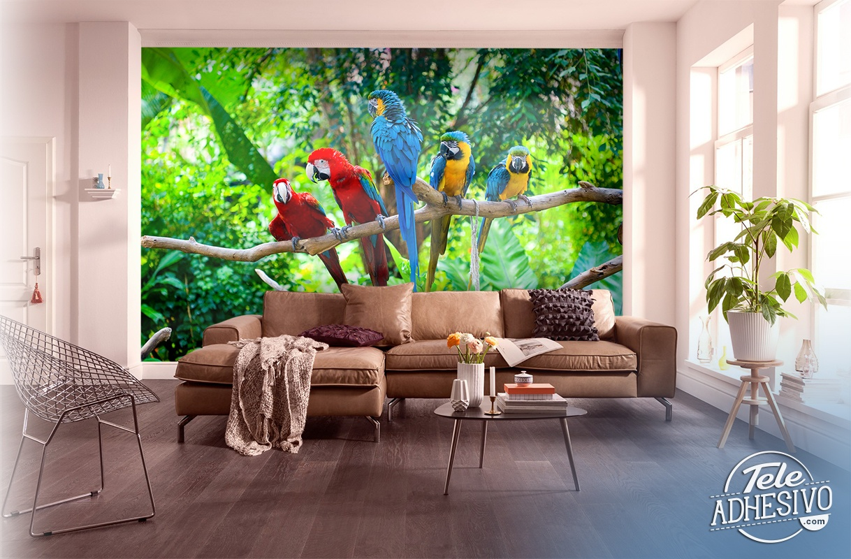 Wall Murals: Five parrots
