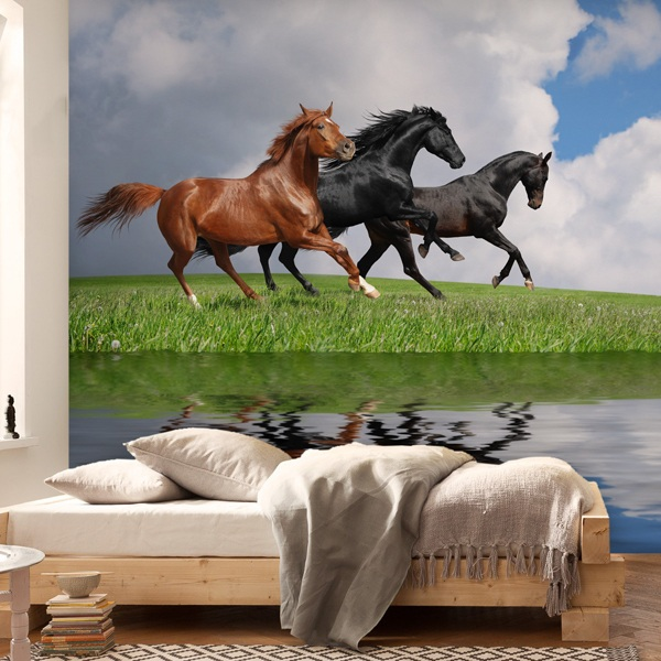 Wall Murals: Horses and water