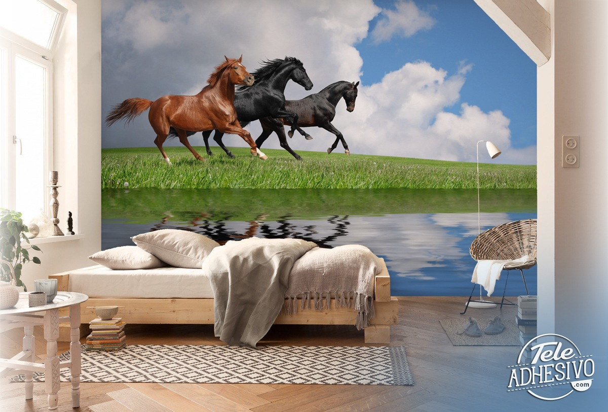 Horses galloping on a lake for Equestrian wall mural