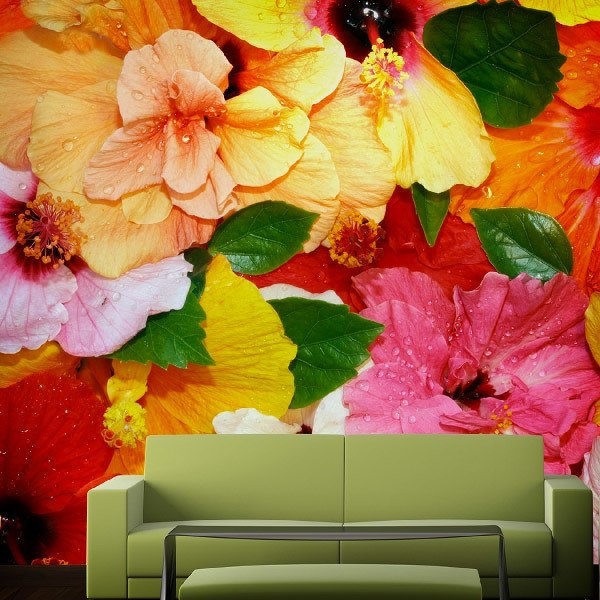 Wall Murals: Colorful flowers