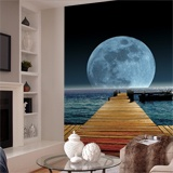 Wall Murals: Moon in the sea 2
