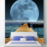 Wall Murals: Moon in the sea 4