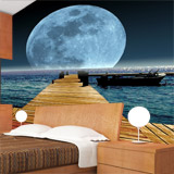 Wall Murals: Moon in the sea 5